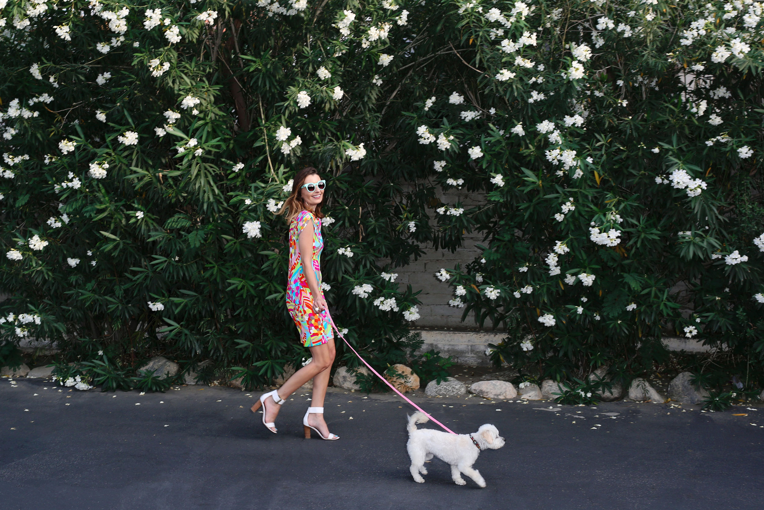 Girl wearing a colorful dress walking a dog. Kim Genevieve Los Angeles Lifestyle Photographer