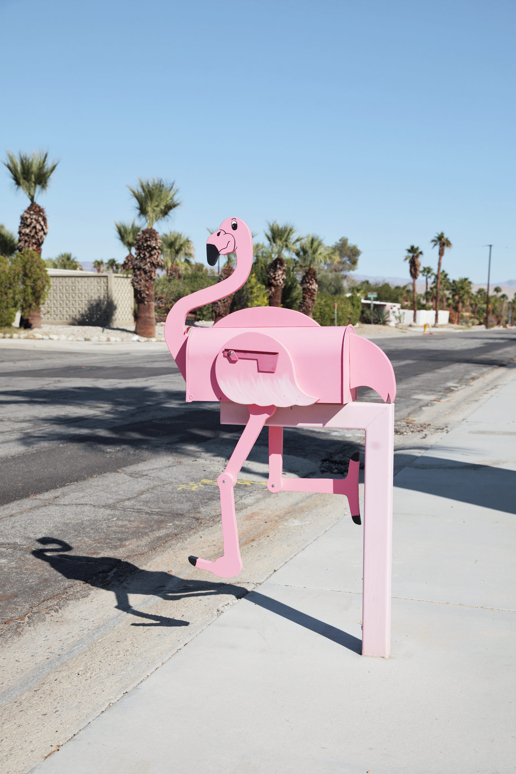 Pink flamingo mailbox. Kimberly Genevieve lifestyle photographer Los Angeles