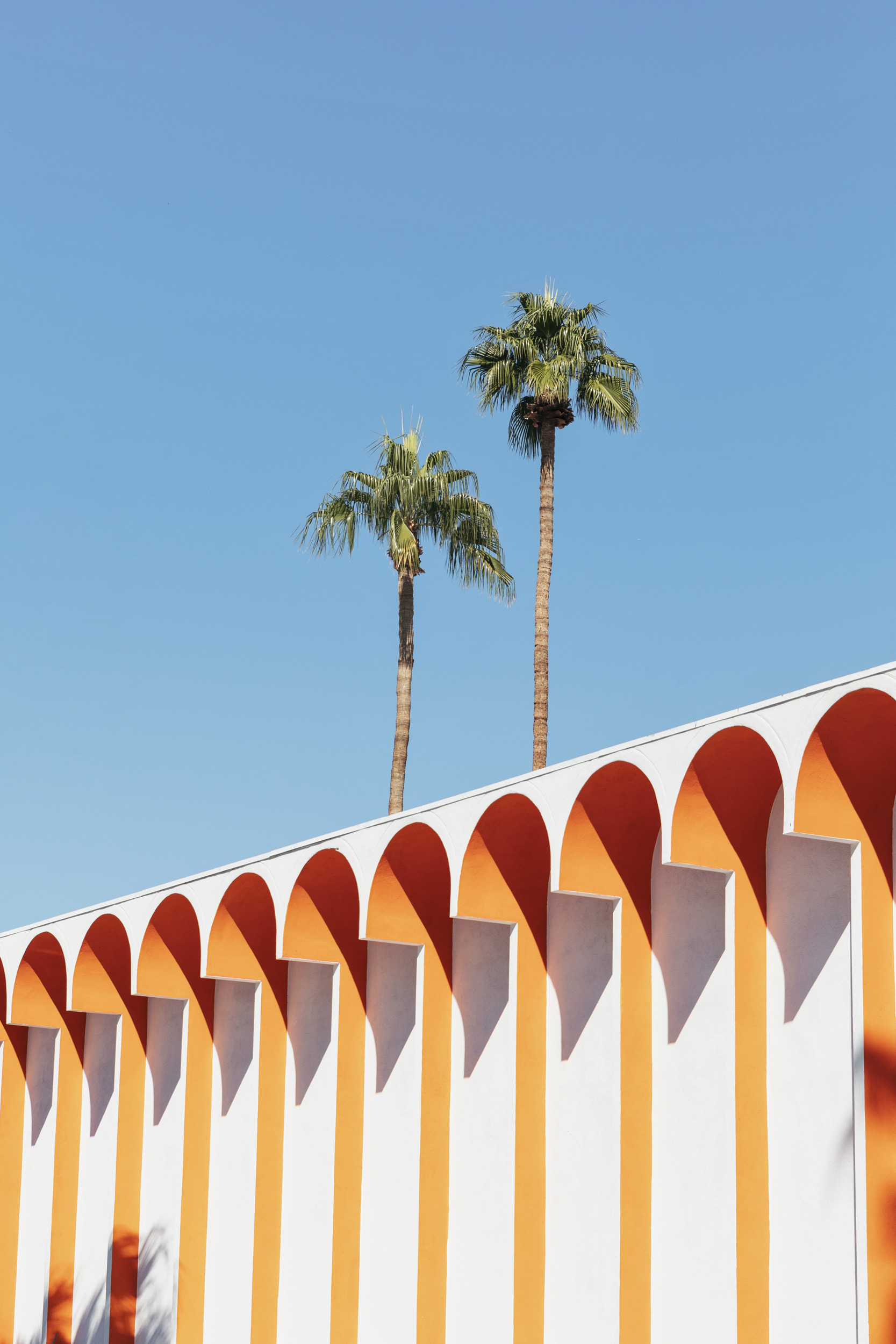 Palm Trees with an orange building. Kimberly Genevieve lifestyle photographer Los Angeles